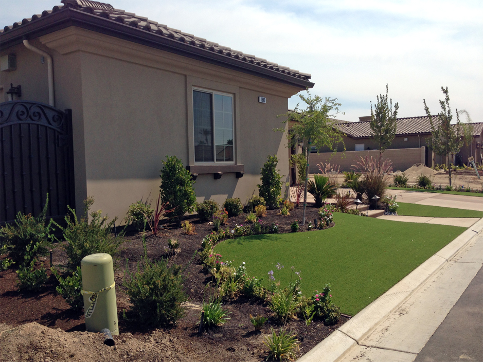 Florida Landscaping Ideas For Front Yard Part - 37: Artificial Grass Orlando