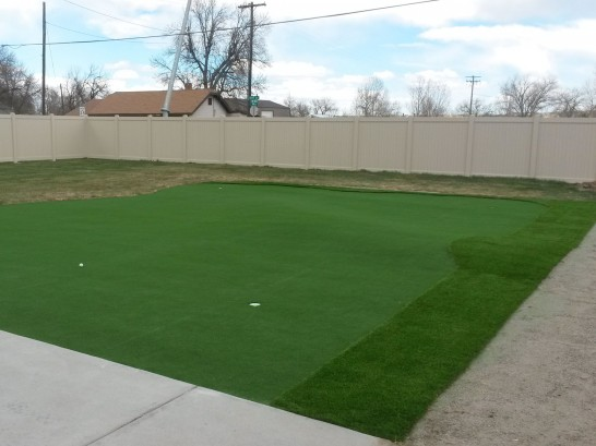 Artificial Grass Photos: Artificial Grass Palm Bay, Florida Indoor Putting Green, Backyard Design
