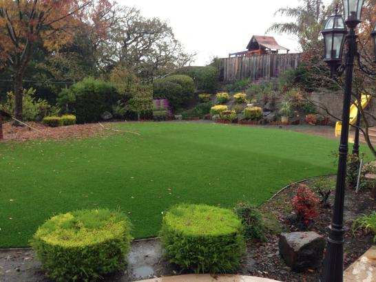 Artificial Grass Photos: Artificial Turf Jan-Phyl Village Florida Lawn  Front Yard