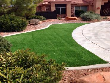 Artificial Grass Photos: Artificial Turf Lake Mary Florida Lawn  Back Yard