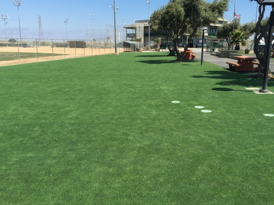 Best Artificial Grass Land O' Lakes, Florida City Landscape, Recreational Areas artificial grass