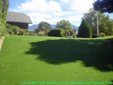 Fake Pet Turf Fairview Shores Florida for Dogs artificial grass