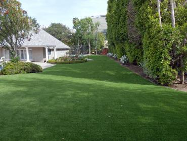 Fake Pets Areas Groveland Florida Installation  Back Yard artificial grass