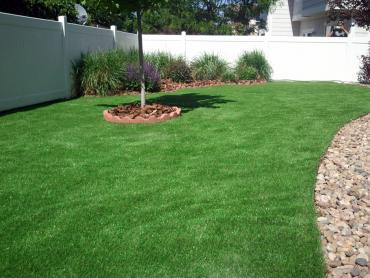 Fake Turf Eatonville Florida  Landscape artificial grass