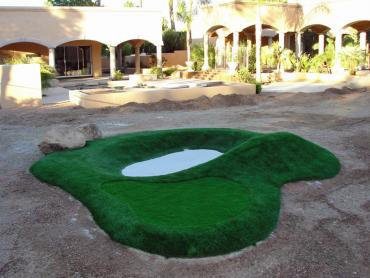 Artificial Grass Photos: Golf Putting Greens Citrus Ridge Florida Fake Turf  Commercial