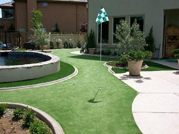 Artificial Grass Photos: Golf Putting Greens West DeLand Florida Artificial Turf  Swimming