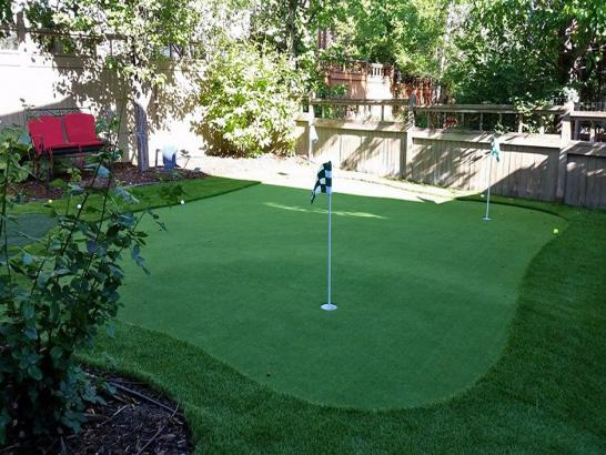 Artificial Grass Photos: Golf Putting Greens West Melbourne Florida Fake Turf