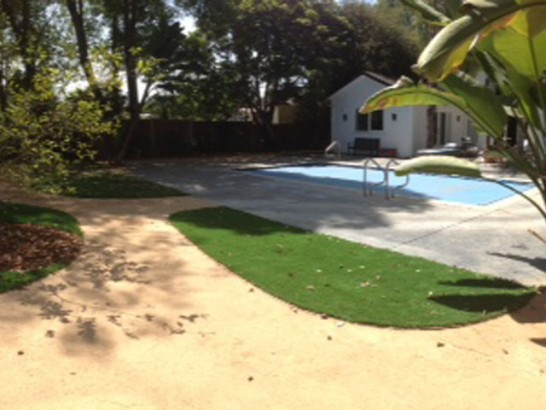 Grass Turf Fish Hawk, Florida Landscape Rock, Small Backyard Ideas artificial grass