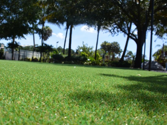 Lawn Services Fort Meade, Florida Landscaping, Parks artificial grass
