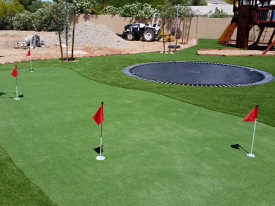 Outdoor Carpet Brandon, Florida Indoor Putting Greens, Backyard Makeover artificial grass
