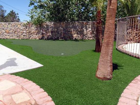 Putting Greens Daytona Beach Shores Florida Synthetic Grass artificial grass
