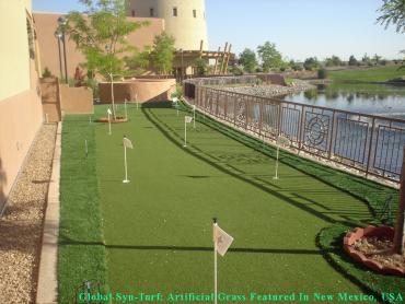 Putting Greens Edgewood Florida Synthetic Turf artificial grass