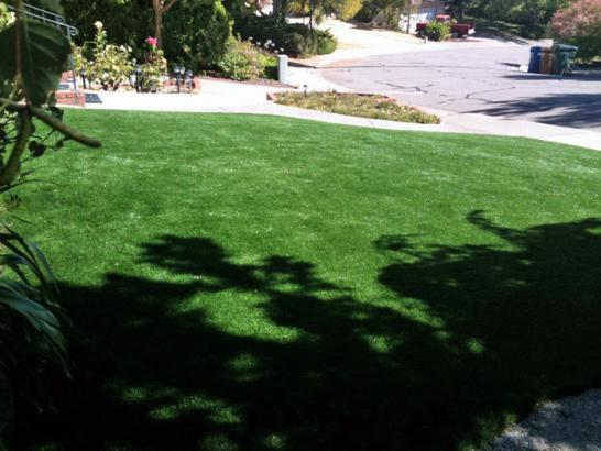 Artificial Grass Photos: Synthetic Grass Cypress Gardens Florida Lawn  Back Yard