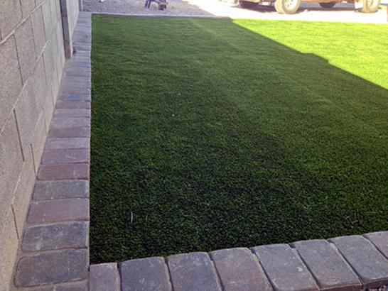 Artificial Grass Photos: Synthetic Pet Turf Nobleton Florida for Dogs