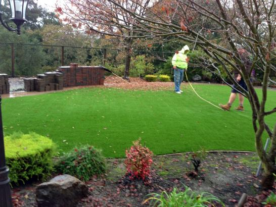 Artificial Grass Photos: Synthetic Turf Inwood Florida Lawn  Commercial Landscape