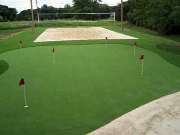Artificial Grass Photos: Synthetic Turf  Stadium Meadow Woods Florida  Parks
