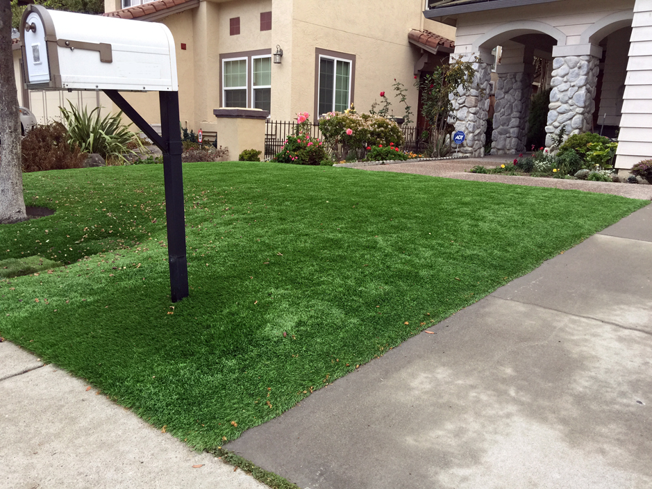Synthetic Turf Alturas Florida Lawn Front Yard
